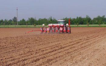 Semina del mais su tre tipologie di letto di semina con tre livelli di precisione