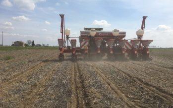 Semina del mais su strip-till nel mantovano: sempre più agricoltori chiedono innovazione