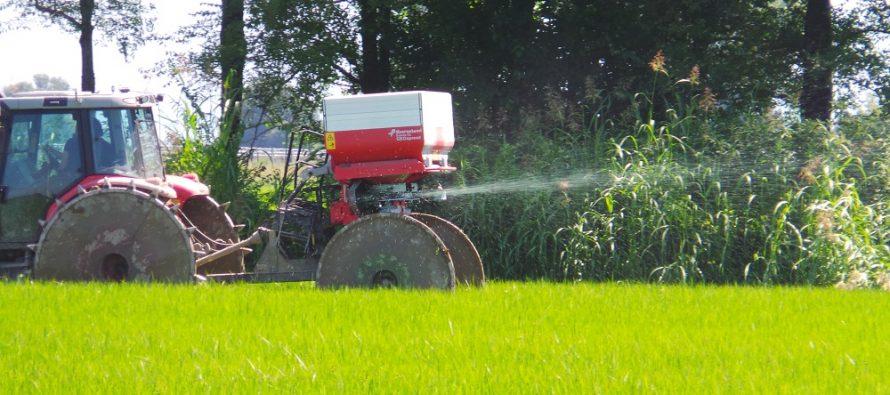 Il drone mappa la vigoria del riso e il Geospread concima a dose variabile