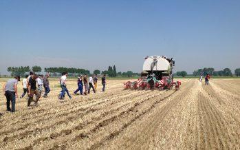 Nuova Pac 2021-2027: eliminato il greening, a rischio i titoli con pagamento a superficie