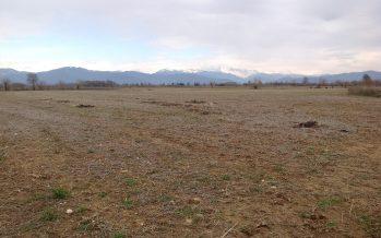 Domande PSR ferme dal 2016: il Friuli rischia di perdere decine di milioni di euro