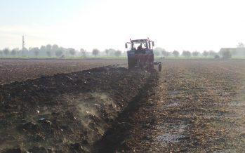 """""""Un'azienda che non innova non sopravvive"""": lo dicono gli agricoltori, ma ne sono davvero convinti?"""