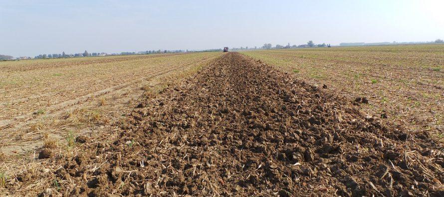 """La parola agli agricoltori: """"Con l'aratro in soffitta, migliorano fertilità e produzioni"""""""