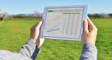 Agricoltura, Frascarelli: «La parola chiave della Pac 2020-2028 sarà 'smart'»