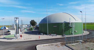 Biogas, non occorre più abbattere l'azoto del digestato