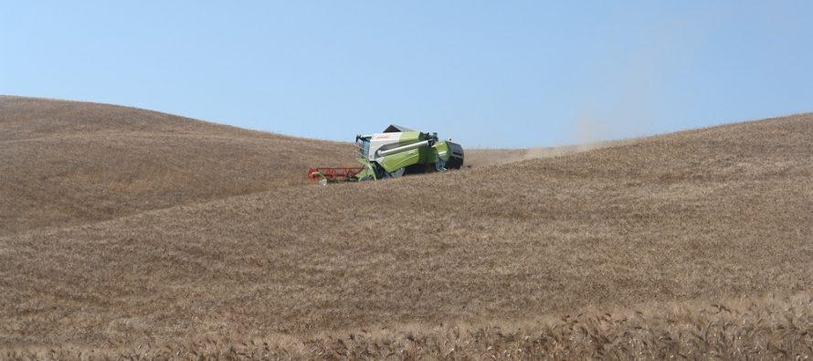 Eredità terreni agricoli: chi ha diritto alla terra e chi alla Pac