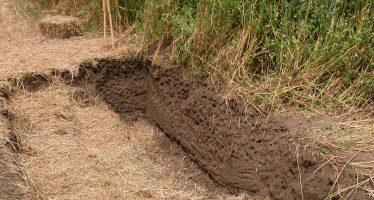 L'aratore convinto deve imparare a rispettare sostanza organica e humus