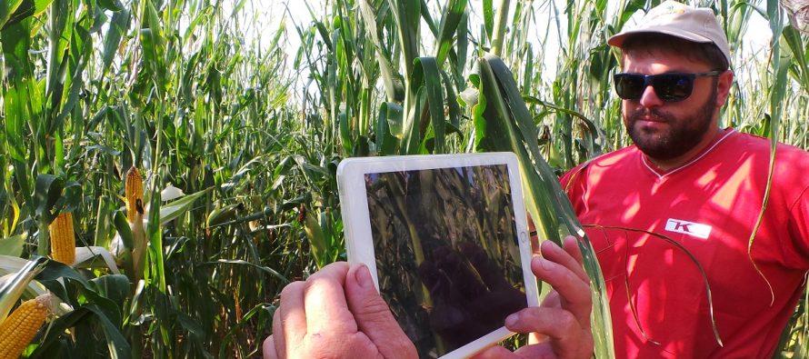 """Dall'agronomo burocrate all'agronomo smart: il """"grillo parlante"""" dell'imprenditore agricolo"""