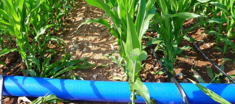 Lombardia, nuova misura Psr finanzia sistemi di irrigazione