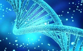 La nuova forbice genetica che supera gli Ogm per come li conosciamo