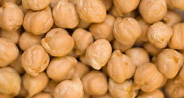Il cece da granella è conveniente solo con gli accordi commerciali