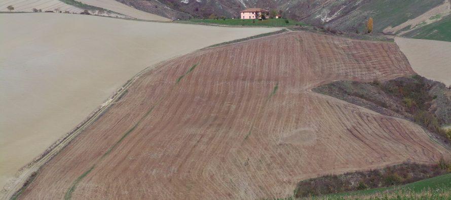 """Toscana """"glifosate free"""": come faranno gli agricoltori che seminano su sodo?"""