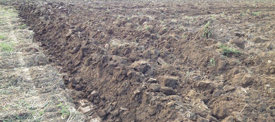 Con aratura ed erpicatura, i terreni agricoli sono sempre meno fertili