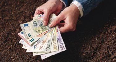 Credito d'imposta e fondo perduto: nuovi sostegni per l'innovazione in agricoltura