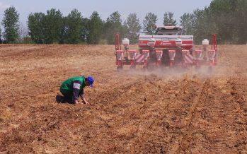 Pac e giovani agricoltori: il premio resta anche se cambia la forma giuridica