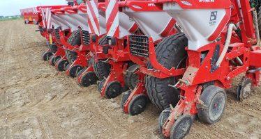 Come si fa la ripuntatura verde su un terreno a minima lavorazione