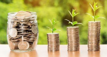 Microcredito 2020 agricoltura: prestiti fino a 35 mila euro con garanzia Ismea