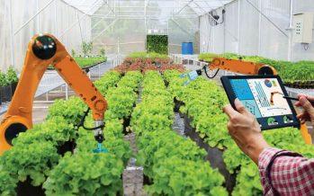 Una rivoluzione nell'agroalimentare è alle porte, ma gli agricoltori sono pronti?