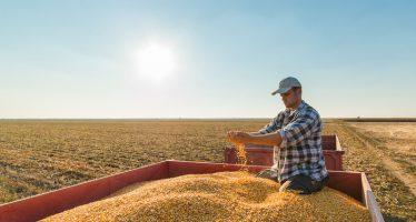 Agricoltura, a chi spettano i 6 mesi di esonero contributivo e cosa succede a chi ha già pagato