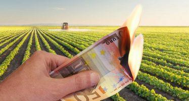 PSR, una montagna di soldi per l'agricoltura che non riusciamo a spendere
