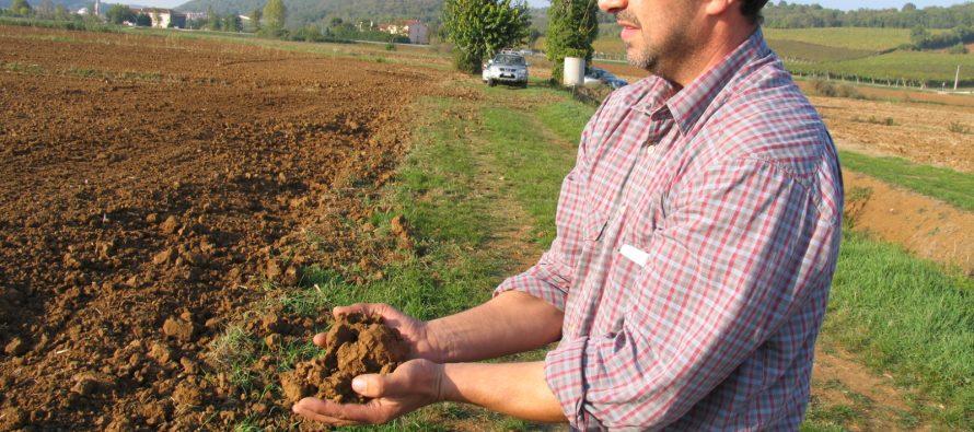 Affitto terreni agricoli, cosa conviene fare con la nuova Pac 2023-2027