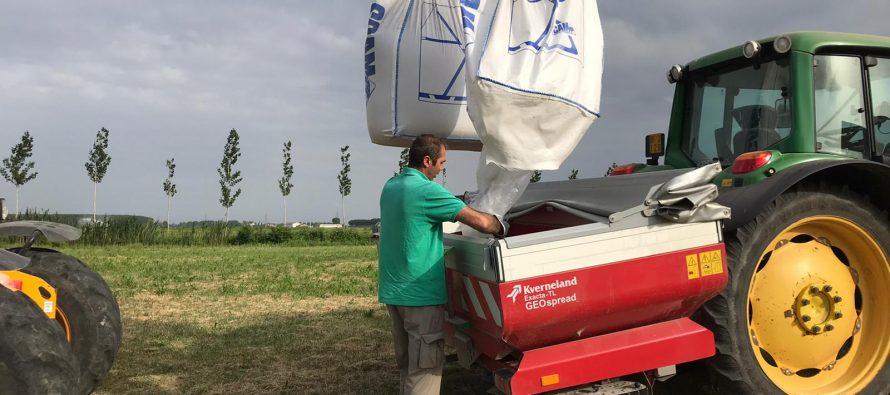 Cereali vernini, il fosforo è indispensabile per una buona partenza