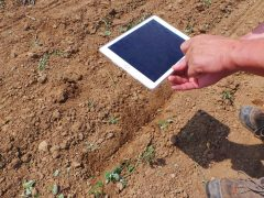 Cercasi esperti in agricoltura digitale: le Regioni imparino dall'Emilia-Romagna