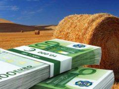 Legge di bilancio 2021, per l'agricoltura solo briciole: tutte le misure approvate