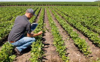 Agricoltura più giovane e smart, l'Italia deve attrezzarsi