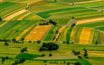 L'agricoltura nel Pnrr: poche idee e molto confuse
