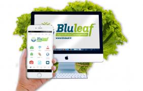 Bluleaf, il supporto intelligente per gestire l'irrigazione