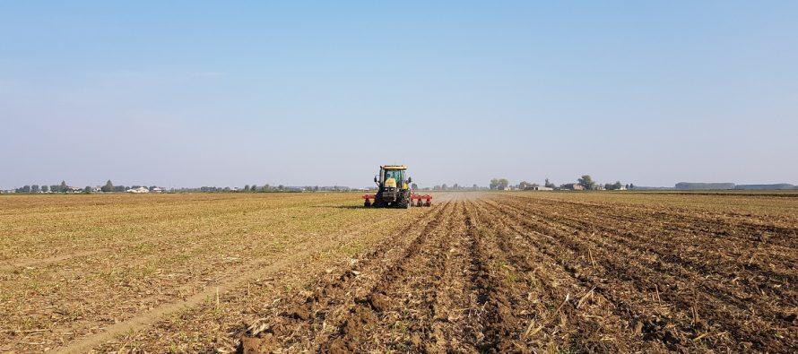 Pac e condizionalità, come cambieranno le buone pratiche agricole