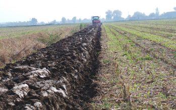I contoterzisti hanno capito dove andrà l'agricoltura?
