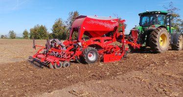 Semina frumento duro, le varietà più produttive 2021